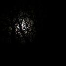Beltane Moon by Daniel Yates