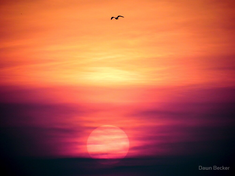 Dawn is cracking!!! ©  by Dawn Becker
