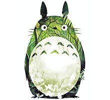 My Neighbour Totoro Photographic Print