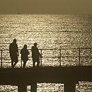 Sunset silhouette by Jan Clarke