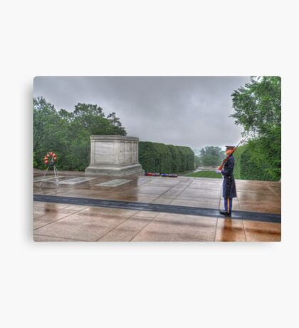 Standing Guard Canvas Print