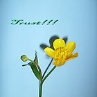 Trust!!! by Ana Belaj