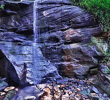 Cooper Park Waterfall by Ian Berry