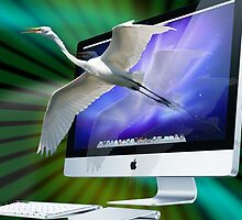 Imac so realistic by Photography by TJ Baccari