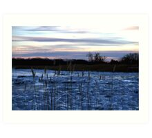 Buckhorn Pond Before Dawn Art Print