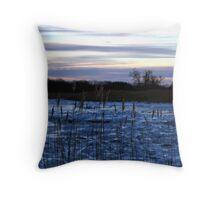 Buckhorn Pond Before Dawn Throw Pillow