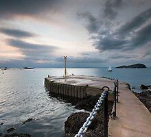 North Berwick Pier by Trevor Weddell