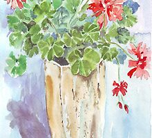 Such Geraniums! by Maree Clarkson