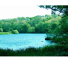 Springtime River Scene. Photographic Print