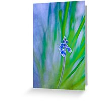 Dancing whispers Greeting Card