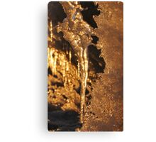 The Icicle Canvas Print