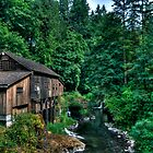 Cedar Creek Grist Mill by Brad Granger