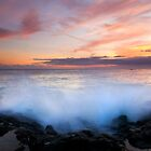 Tropical Explosion by DawsonImages