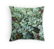 Sedum Throw Pillow