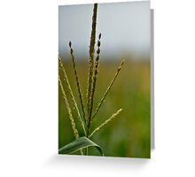 Farming Country Greeting Card