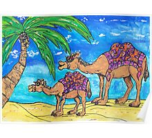 Camel Mum and Bub Poster