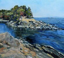 Canoe Pass at Winter Cove by TerrillWelch
