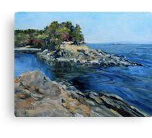 Canoe Pass at Winter Cove Canvas Print