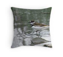 Killdeer - at waters edge - Penn Lake Park - Marathon Ontario Canada Throw Pillow