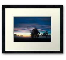Weeping Willow in the Mist Framed Print
