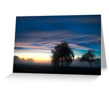 Weeping Willow in the Mist Greeting Card