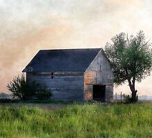 Country Abode by Brian Gaynor