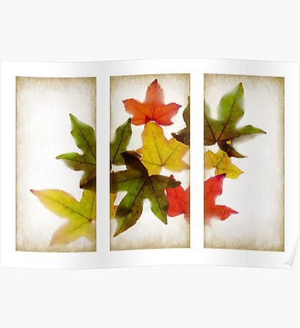 Frozen Leaves Triptych Poster