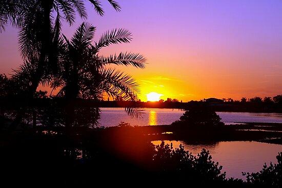 Sun's goodnight kiss by ♥⊱ B. Randi Bailey