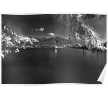 swiss alpine lake Poster