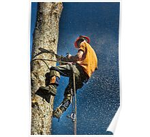 SNOWING SAWDUST Poster