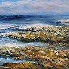 Salish Sea No Separation by TerrillWelch