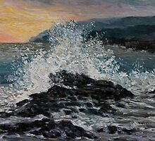 Point No Point Mid-storm by TerrillWelch