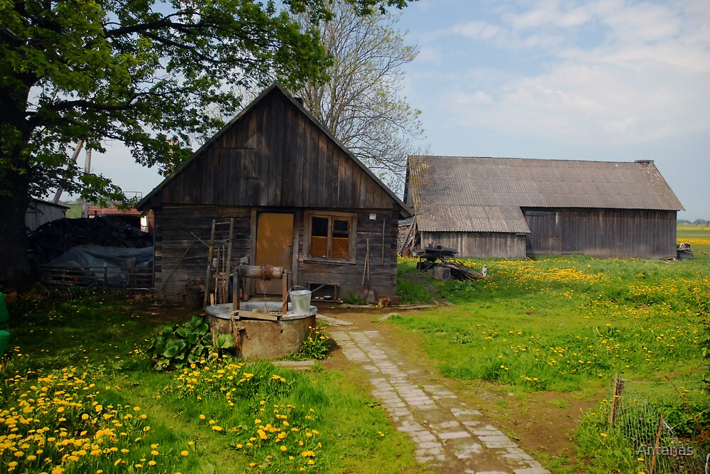 Spring in old farmstead (My grandfather houseyard) by Antanas
