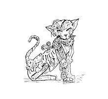 Steampunk Cat Photographic Print