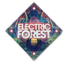 Electric Forest  by ymadison0160
