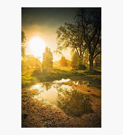 The Foggy Sunrise Photographic Print