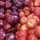 apples everywhere by ANNABEL   S. ALENTON
