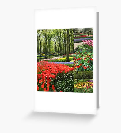 A Dutch Spring Collage Greeting Card