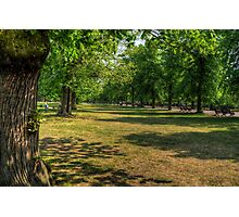 The Park - Greenwich Photographic Print