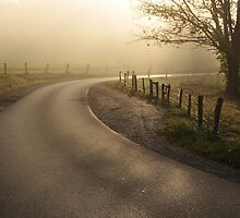 around the bend by dc witmer