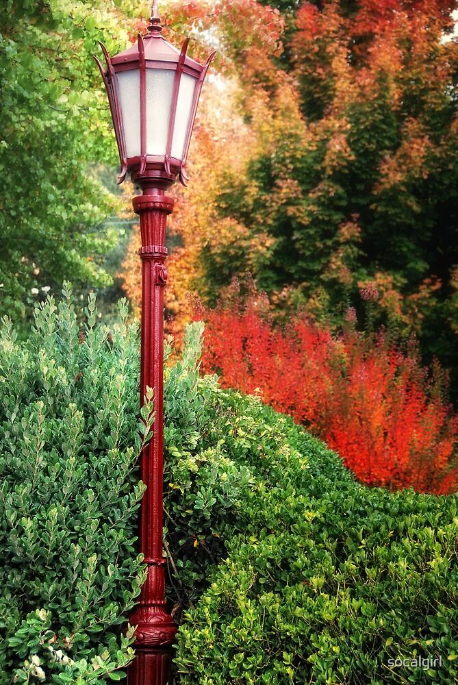 Street Lamp by socalgirl
