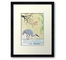 Crane in Pond Framed Print