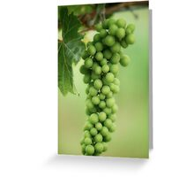Wine Before Picture Greeting Card
