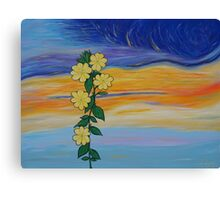 Evening Primrose at Sunset Canvas Print