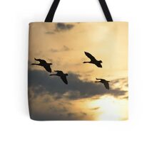 Geese in the Sunset Tote Bag