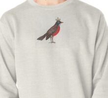 Regal Robin Pullover