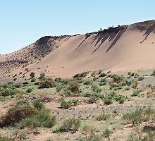 Southern Gobi Desert Mongolia by Carole-Anne