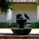 """Raven at the Fountain"" by waddleudo"
