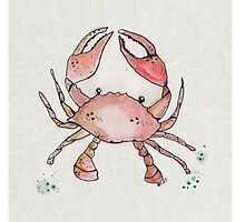Wee Crab Photographic Print