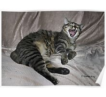 Big Yawn Poster